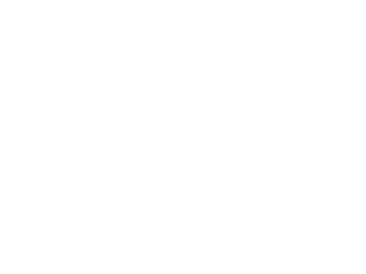 Historische Stories